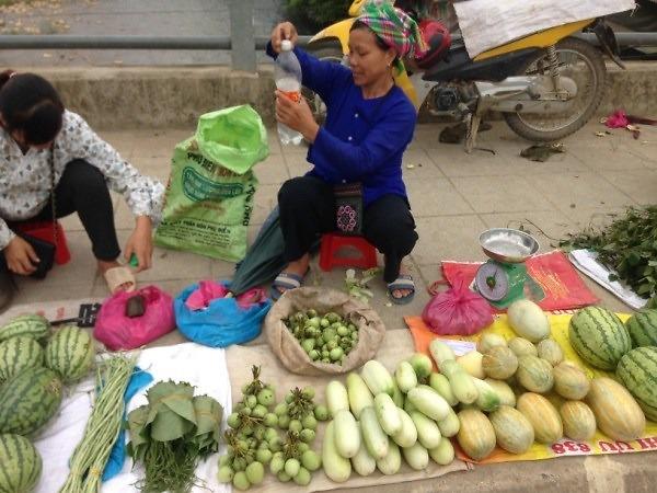 Mác cai rừng - Hương vị độc đáo ở Cao Bằng