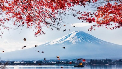 NHẬT BẢN MÙA LÁ ĐỎ 2019: TOKYO– PHÚ SĨ – HAKONE – KYOTO – OSAKA