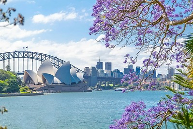 LỄ HỘI HOA FLORIADE: MELBOURNE – SYDNEY -CANBERRA